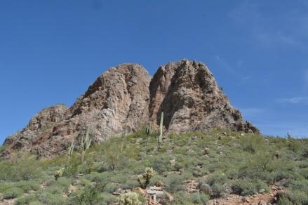 Arizona (8)